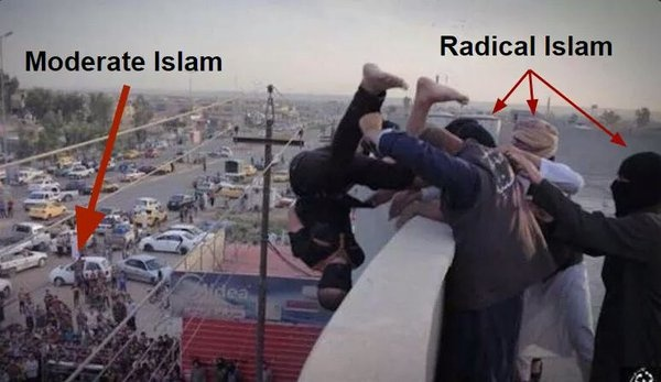 Moderates vs. radical muslims